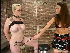 Nerdy blonde get her pussy whipped and toyed by a brunette