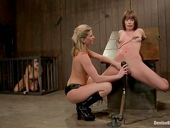 Some busty and sassy slaves are in line to be tortured