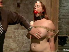 Sexy girls get humiliated and tortured by their masters