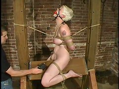 Sizzling blond slave Rose is standing all kinds of humiliation