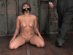 Hog tied DragonLily gets clothespinned and tortured