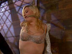 Superb Lacey Jane gets punished and toyed in bondage video