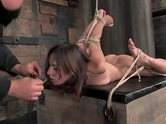 Bound Amber Rayne sucks a dick and gets toyed rough