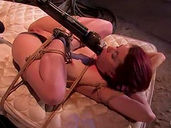 Busty girl gets hogtied, suspended, twitched and bondaged