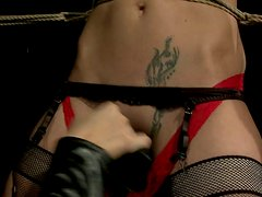 Submissive girl is toy fucked in hardcore BDSM porn video
