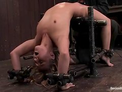 Playful siren gets arched and poked with toys
