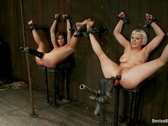 Ariel X and Cherry Torn get bonded and toyed hard