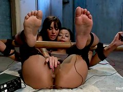 A simple BDSM session with two simple bitches