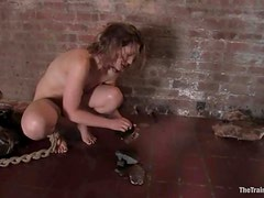 Sarah Shevon gets her holes banged while being chained in pillory