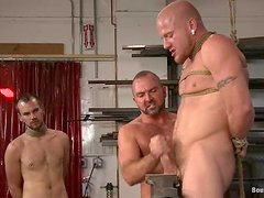 Three muscled dudes suck and fucks in wild BDSM video