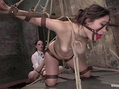 Getting drilled with a strapon in suspension is what she loves