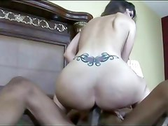 Brunette with tattoo having interracial sex