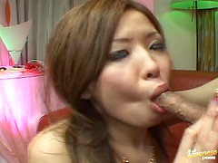 Hot Blowjob From An Asian Babe To Her Friend Disguised As A Puppy