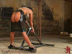 Horny Bitches Love BDSM Game