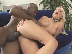 Seductive Blonde Holly Wellin Loves Her Share Of Huge Black Cock