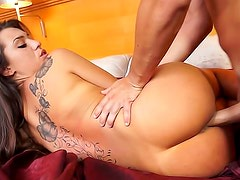 Back tattoo girl drilled by cock