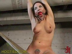 Gag Ball and Nipple Pinching For Brunette In BDSM Vid