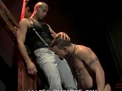 Muscle Guys Hard Flogging And Fucking Video