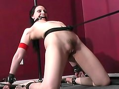 Gagged girl bent in bondage video