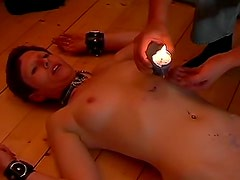 Collared girl suffers and sucks cock