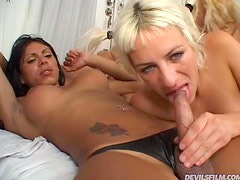 Three Trannies Having Sex with a Horny Blonde Girl