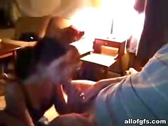 Home made blowjob with naughty brunette