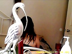 latina gilma from omaha doing blowjob for money