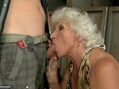 Busty Granny Living The Dream of Having Sex with a Fresh Dick