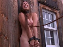 Village modest chick gets tied up in the deserted shed