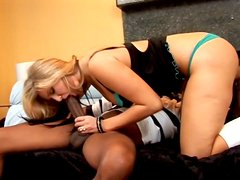 Pawg Daryn Darby is rammed brutally doggy style