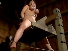 She gets hanged on her tits till her nipple bleed