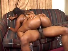 Black fatty fucked hard from behind